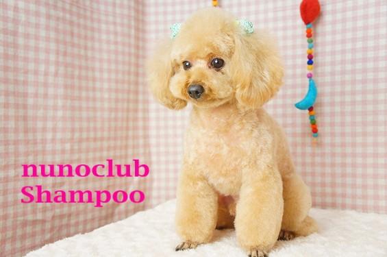 nunoclub.com トリミングサロン東京ヌーンクラブ