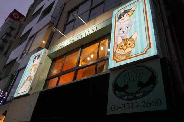 【キャンペーン情報】猫専用ホテル、ヌーノクラブ高円寺をぜひご利用ください!【特別価格】