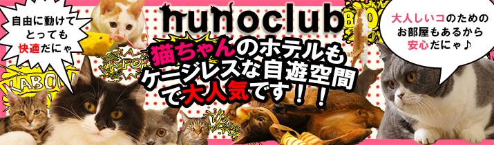 ヌーノクラブの猫のペットホテル・キャットホテルは安くて安心安全!