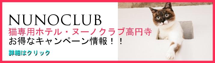 猫専用のペットホテル、ヌーノクラブが高円寺店を今夏にオープン