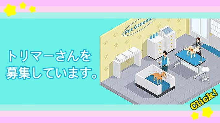 トリミングサロン、ヌーノクラブ新井薬師・西新宿でトリマーさんを募集しています。